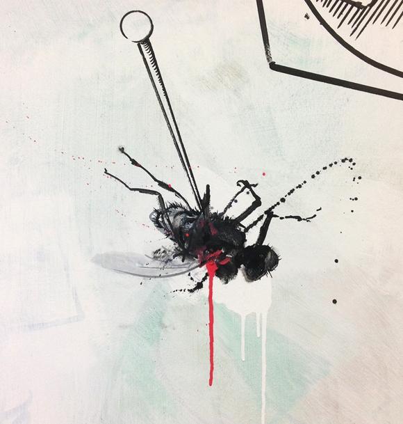 wallfly